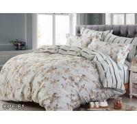 CP-061 комплект постельного белья евро сатин Retrouyt